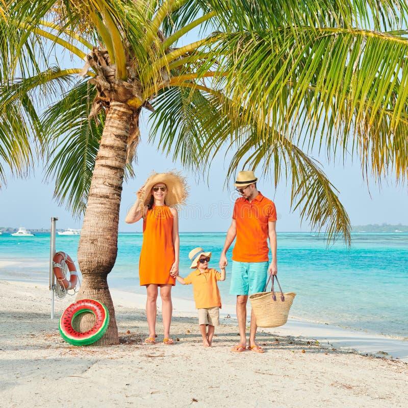 Οικογένεια τριών στην παραλία κάτω από το φοίνικα στοκ εικόνα με δικαίωμα ελεύθερης χρήσης