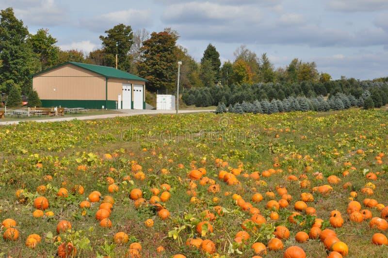 Οικογενειακά αγροκτήματα Roba στο δήμο βόρειου Abington στην Πενσυλβανία στοκ φωτογραφία