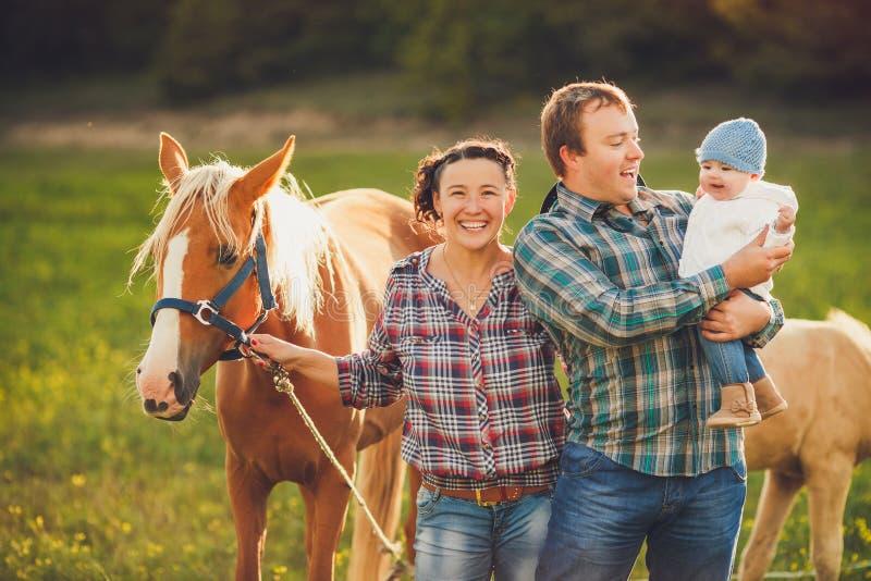 Οικογενειακά ταΐζοντας άλογα σε ένα λιβάδι στοκ εικόνες
