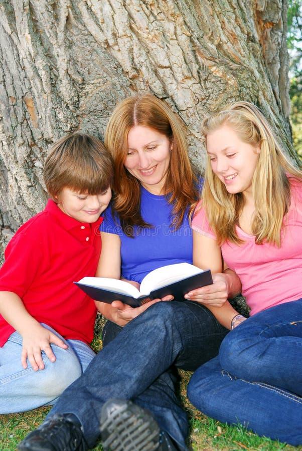 οικογενειακή ανάγνωση &beta στοκ φωτογραφίες
