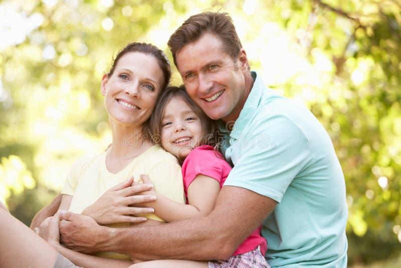 Οικογενειακή συνεδρίαση στο δέντρο στο πάρκο στοκ εικόνες
