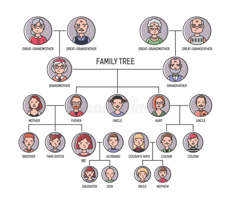 Οικογενειακό δέντρο, καταγωγή ή πρότυπο διαγραμμάτων καταγωγής Χαριτωμένοι άνδρες ` s και πορτρέτα γυναικών ` s στα κυκλικά πλαίσ διανυσματική απεικόνιση