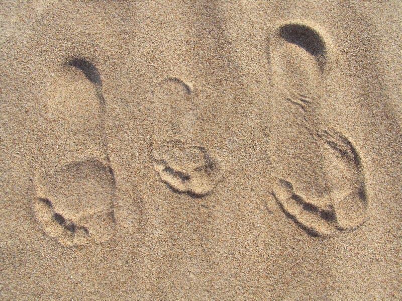 Οικογενειακό πορτρέτο στην άμμο στοκ φωτογραφία