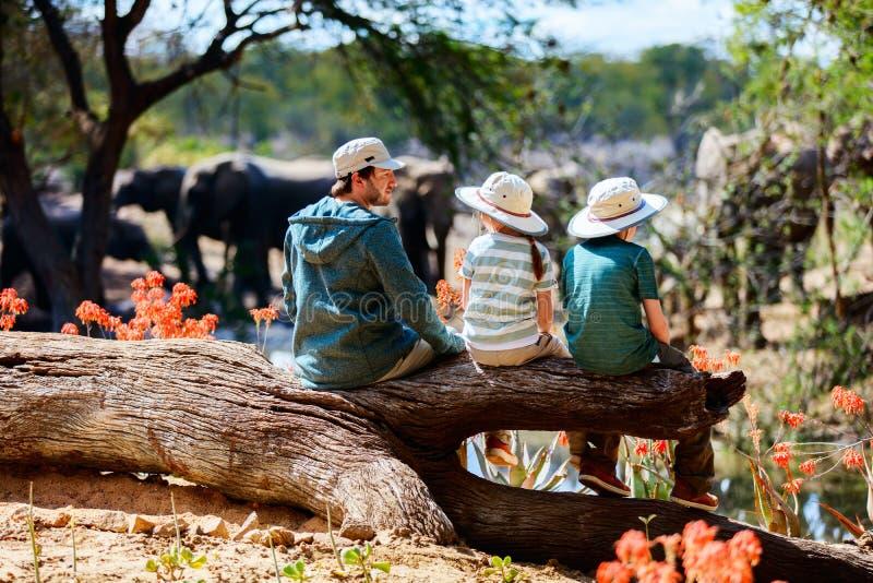 Οικογενειακό σαφάρι στοκ φωτογραφία