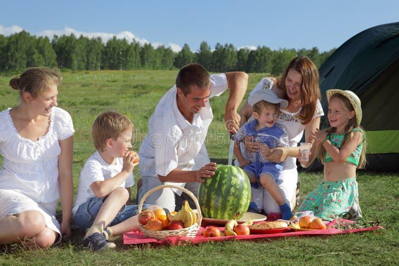 οικογενειακό picnic στοκ εικόνες με δικαίωμα ελεύθερης χρήσης
