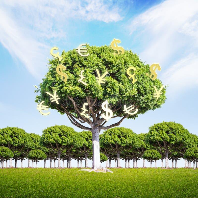 Οικονομικό δέντρο χρημάτων έννοιας αύξησης απεικόνιση αποθεμάτων