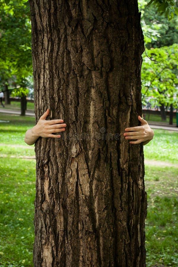 Οικολογία, έννοια φύσης αγάπης στοκ εικόνες