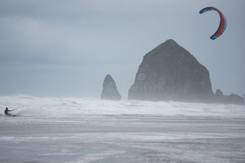 Οικότροφος ικτίνων με τους σωρούς θάλασσας στο υπόβαθρο στοκ εικόνα