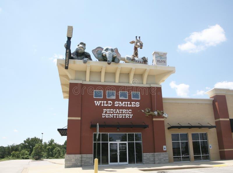 Οι άγρια περιοχές χαμογελούν την παιδιατρική οδοντιατρική στοκ εικόνες με δικαίωμα ελεύθερης χρήσης