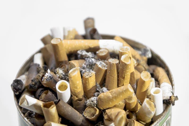 Οι άκρες τσιγάρων στο α μπορούν συντηρημένος στοκ εικόνες με δικαίωμα ελεύθερης χρήσης