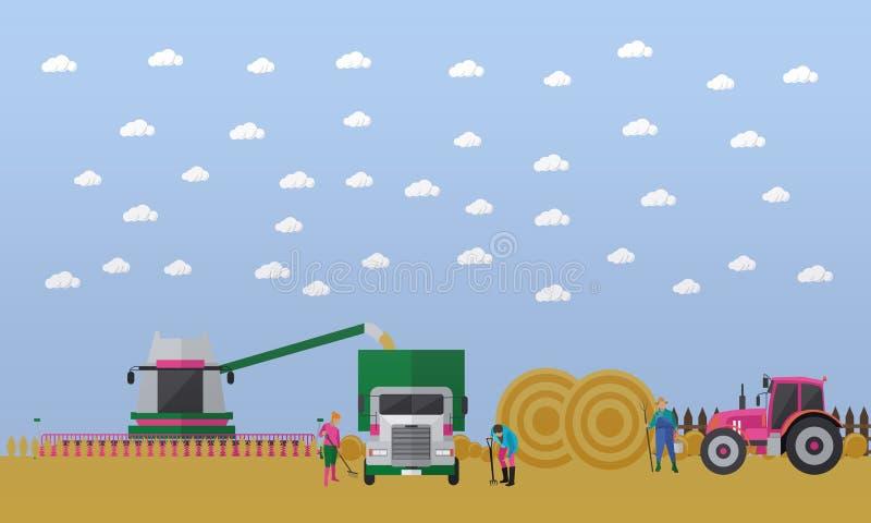 Οι άνθρωποι, γεωργικά μηχανήματα συνδυάζουν τη θεριστική μηχανή, φορτηγό, τρακτέρ στον τομέα, διάνυσμα διανυσματική απεικόνιση