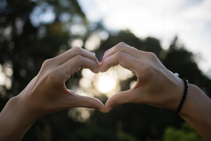Οι άνθρωποι κάνουν ένα καρδιά-διαμορφωμένο χέρι, με ένα όμορφο υπόβαθρο, ένα bokeh του φωτός του ήλιου και ένα δέντρο στην έννοια στοκ εικόνα με δικαίωμα ελεύθερης χρήσης