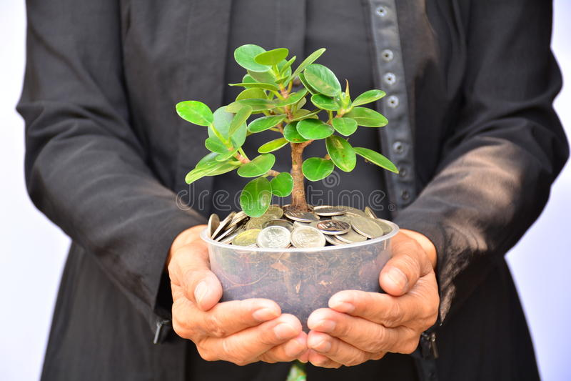 Οι άνθρωποι που κρατούν flowerpot έχουν τις πράσινες εγκαταστάσεις και τα νομίσματα flowerpot στοκ φωτογραφίες