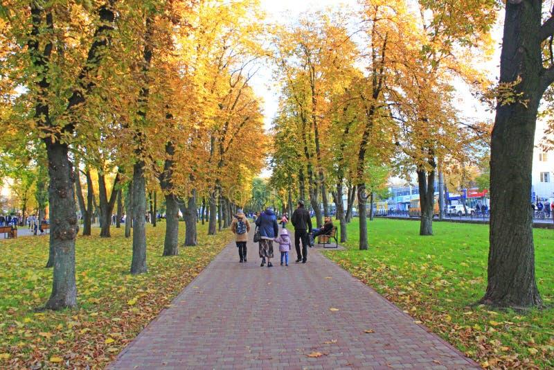 Οι άνθρωποι που περπατούν στην πόλη φθινοπώρου σταθμεύουν με τα μεγάλα δέντρα οικογενειακή χαλάρωση στοκ φωτογραφίες με δικαίωμα ελεύθερης χρήσης