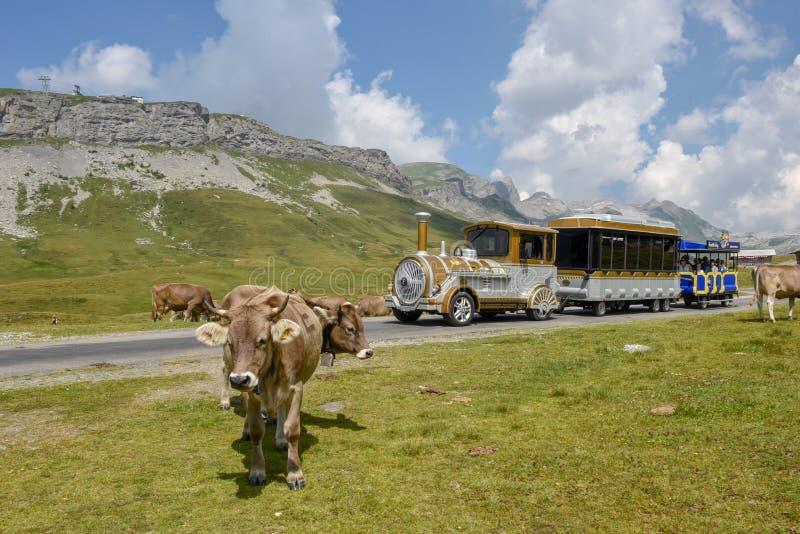 Οι άνθρωποι που ταξιδεύουν σε έναν τουρίστα εκπαιδεύουν σε melchsee-Frutt σε Switze στοκ φωτογραφίες με δικαίωμα ελεύθερης χρήσης