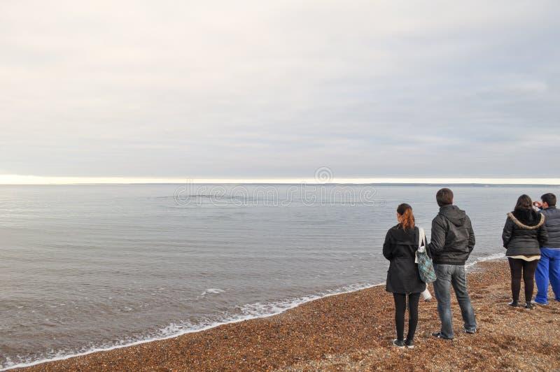 Οι άνθρωποι προσέχουν τις φάλαινες στην παραλία Doradillo στη χερσόνησο Valdes, αργεντινή Παταγωνία στοκ φωτογραφίες με δικαίωμα ελεύθερης χρήσης