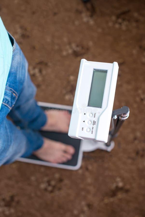 Οι άνθρωποι στα τζιν στέκονται σε μια κλίμακα και μετρούν το βάρος του στοκ φωτογραφίες