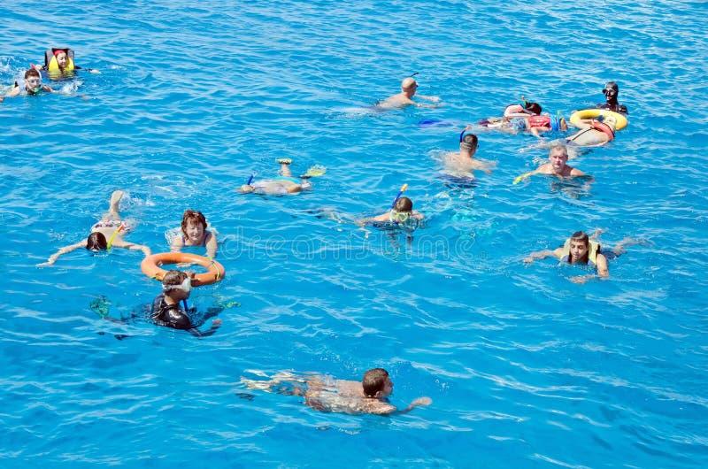 Οι άνθρωποι χαλαρώνουν ενεργά, κολυμπούν στη Ερυθρά Θάλασσα Δραστηριότητα, κολύμβηση, τοπίο νερού Αίγυπτος, Αφρική στοκ εικόνες