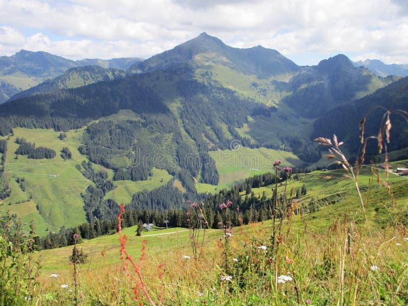Οι Άλπεις - άποψη των αιχμών βουνών στην Αυστρία στοκ φωτογραφίες με δικαίωμα ελεύθερης χρήσης
