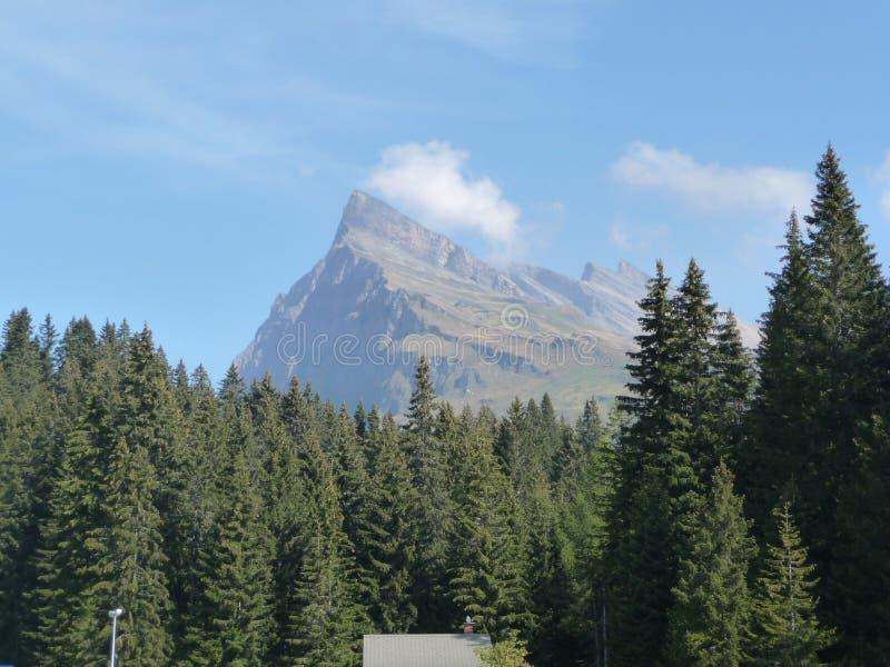 Οι Άλπεις που βλέπουν από τη Bella Ιταλία στοκ εικόνες