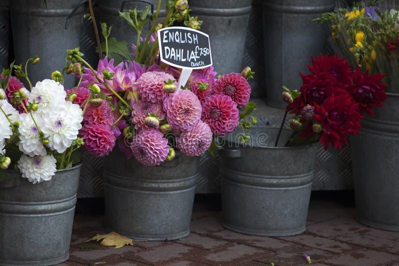 Οι αγγλικές ντάλιες για την πώληση σε ένα λουλούδι χρονοτριβούν κοντά στο μετρό στοκ φωτογραφία