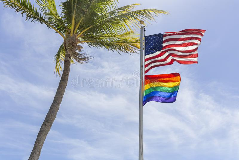 Οι αμερικανικές και ομοφυλοφιλικές μύγες σημαιών υπερηφάνειας υψηλές δεξιά ενός φοίνικα καρύδων στοκ φωτογραφία με δικαίωμα ελεύθερης χρήσης