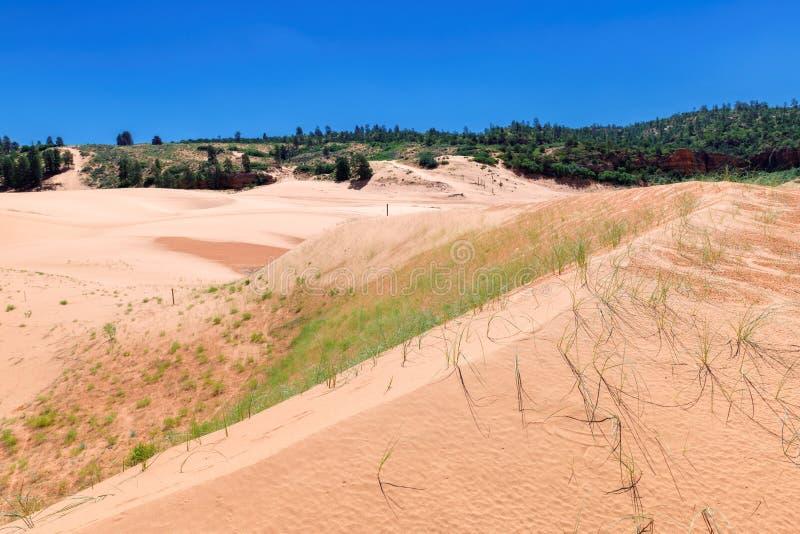 οι αμμόλοφοι κοραλλιών σταθμεύουν το ρόδινο κράτος Utah άμμου στοκ φωτογραφίες