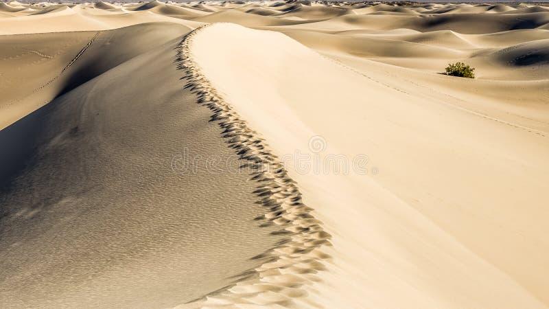 οι αμμόλοφοι θανάτου στρώνουν με άμμο την κοιλάδα στοκ φωτογραφία