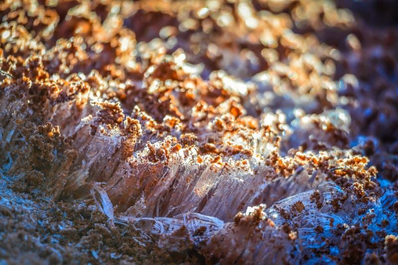 Οι ανυψώσεις παγετού τα ξημερώματα στον κόκκινο ρύπο στοκ εικόνες με δικαίωμα ελεύθερης χρήσης
