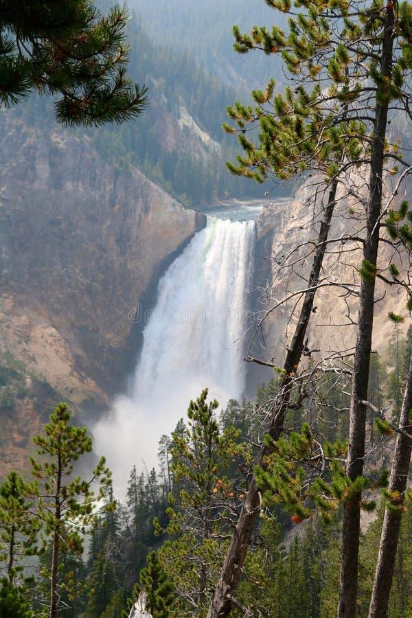 Οι ανώτερες πτώσεις στο μεγάλο φαράγγι του Yellowstone στοκ φωτογραφία