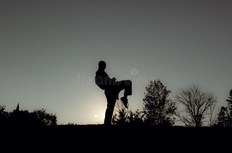 Οι αρειανοί καλλιτέχνες σκιαγραφούν - χτύπημα στο γόνατο στοκ εικόνα