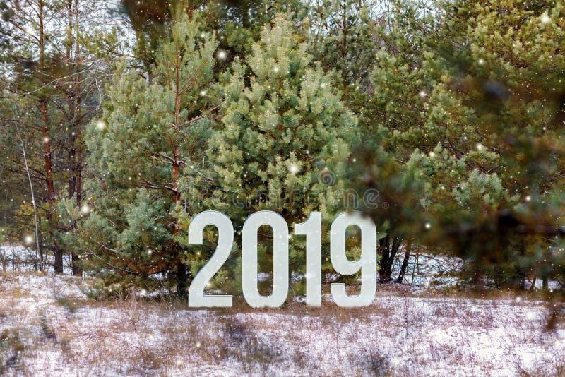 Οι αριθμοί του ερχόμενου έτους στέκονται στα ακτινοβολώντας δέντρα πεύκων του χειμερινού δασικού υποβάθρου στοκ φωτογραφίες