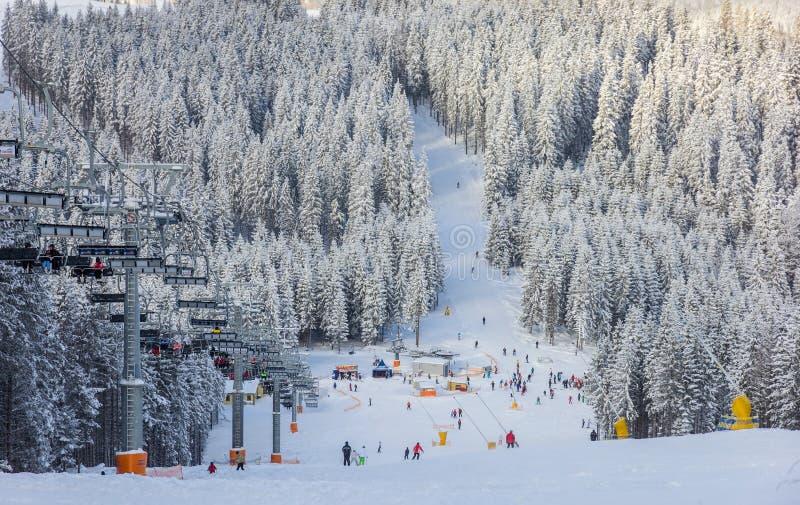 Οι αρχάριοι κάνουν σκι ίχνος και υπαίθριος ανελκυστήρας καρεκλών σε μια ηλιόλουστη χειμερινή ημέρα στοκ εικόνα με δικαίωμα ελεύθερης χρήσης