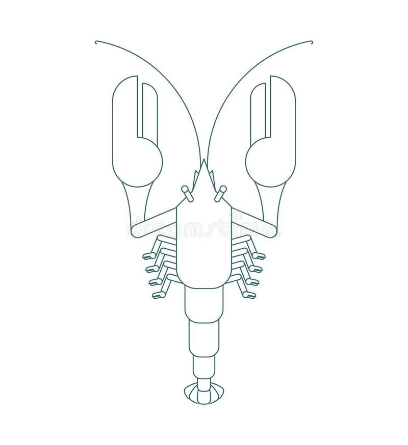 Οι αστακοί περιγράφουν το γραμμικό ύφος που απομονώνεται Θαλάσσια καρκινοειδής λιχουδιά επίσης corel σύρετε το διάνυσμα απεικόνισ διανυσματική απεικόνιση