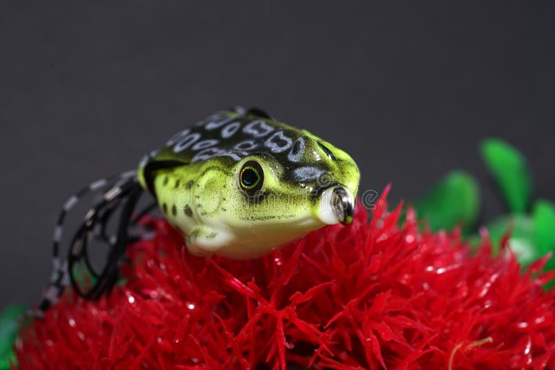 Οι βάτραχοι φιαγμένοι από πλαστικό με τους αιχμηρούς γάντζους είναι καλοταιριασμένοι στοκ εικόνα