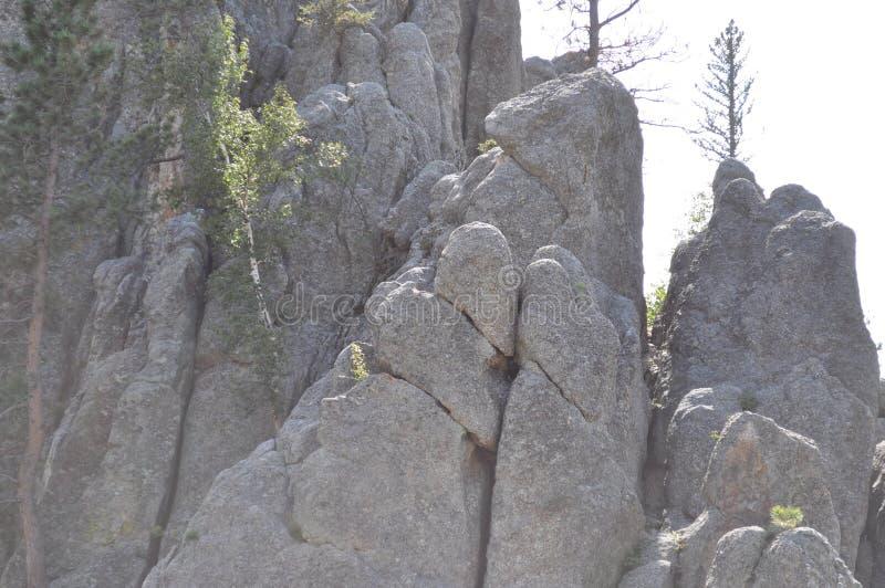Οι βελόνες στη μαύρη τις νότιες Ντακότα και θέες βουνού λόφων στοκ φωτογραφίες με δικαίωμα ελεύθερης χρήσης