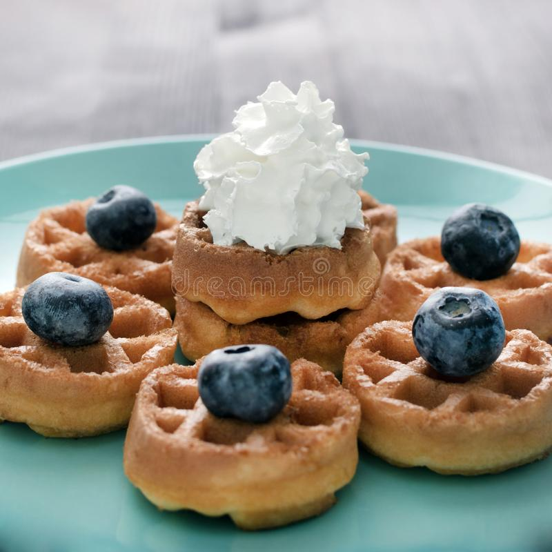 Οι γκοφρέτες με την κτυπημένη κρέμα των βακκινίων βρίσκονται σε ένα μπλε πιάτο Υπέροχα διακοσμημένο επιδόρπιο Ένα εύγευστο πιάτο  στοκ φωτογραφία με δικαίωμα ελεύθερης χρήσης