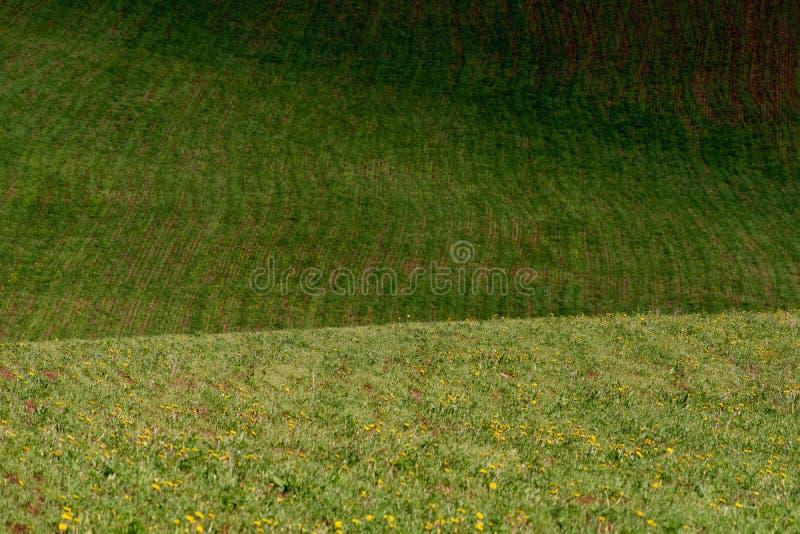 Οι γραμμές πράσινων λόφων δημιουργούν τα όμορφα σχέδια όπως τα κύματα Μερικώς φωτισμένος από τον ήλιο Όμορφη ανασκόπηση στοκ εικόνες με δικαίωμα ελεύθερης χρήσης