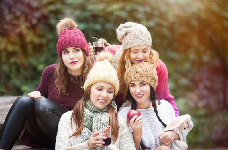 Οι γυναίκες είναι καλύτεροι φίλοι με τα φρούτα σε ένα πικ-νίκ στην επαρχία στοκ εικόνες