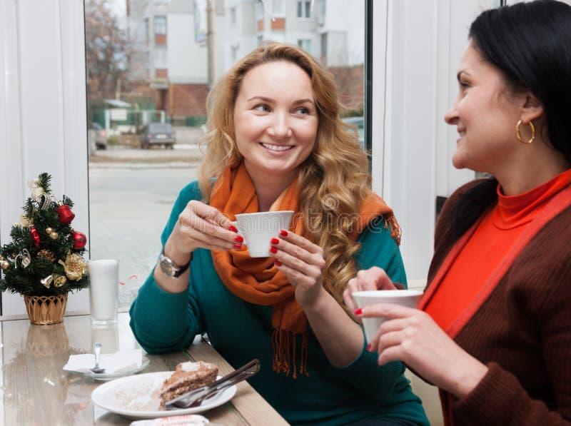 Οι γυναίκες κουτσομπολεύουν στον καφέ στοκ φωτογραφίες με δικαίωμα ελεύθερης χρήσης