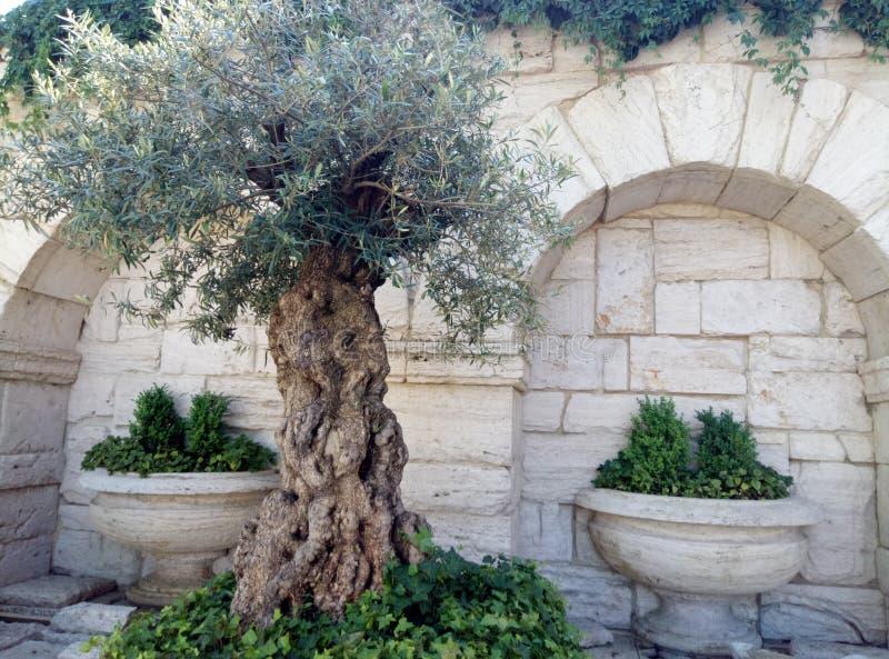 Οι διακοσμήσεις είναι παρόμοιες με το ελληνικό ύφος στοκ εικόνες