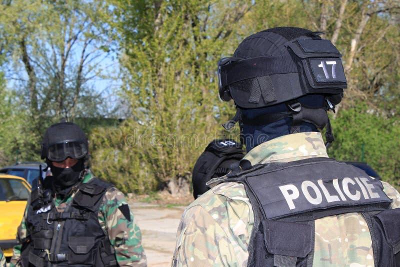 Οι ειδικοί καταδρομείς αστυνομίας συλλαμβάνουν έναν τρομοκράτη στοκ φωτογραφίες με δικαίωμα ελεύθερης χρήσης