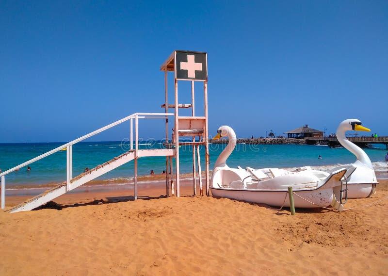 οι επιπλέουσες βάρκες με τον κύκνο διαμορφώνουν στην ακτή μιας παραλίας έτοιμης να μισθωθεί από τους τουρίστες και κοντά στη θέση στοκ φωτογραφία