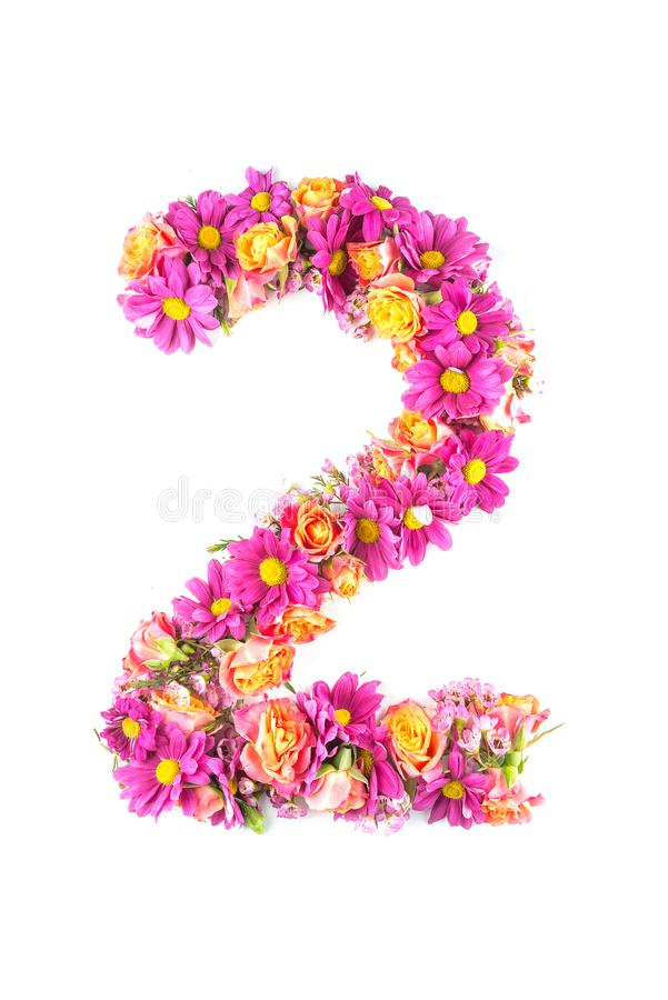 Οι επιστολές και οι αριθμοί που γίνονται από τα ζωντανά λουλούδια που απομονώνονται στο άσπρο υπόβαθρο, κάνουν το κείμενο με το α στοκ εικόνες