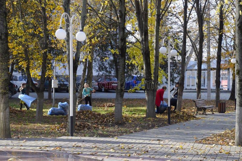Οι εργαζόμενοι του δήμου συλλέγουν τα φύλλα στο πάρκο Οι κοινωνικοί λειτουργοί γυναικών αφαίρεσαν το φύλλωμα στοκ εικόνες