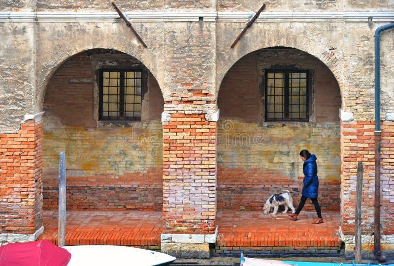 Οι ζωηρόχρωμες γωνίες της Βενετίας με τη γυναίκα περπατούν με το σκυλί κάτω από τις αψίδες του παλαιών κτηρίου και των παραθύρων  στοκ εικόνα