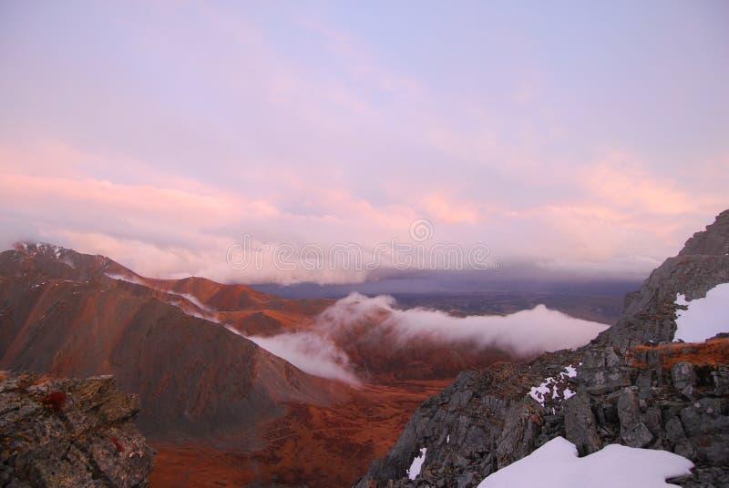 οι ημέρες altai διαρκούν το καλοκαίρι βουνών στοκ φωτογραφία