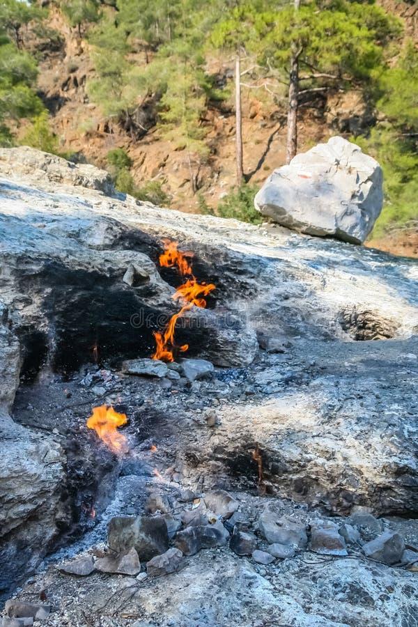 Οι θρυλικές φλόγες πυρκαγιάς Chimaera τοποθετούν στοκ εικόνες