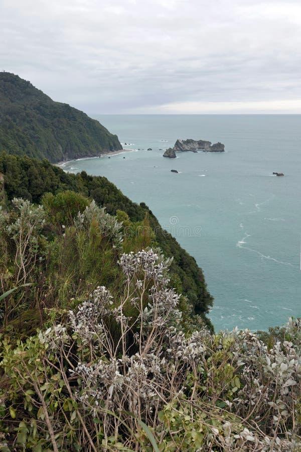 Οι ιππότες δείχνουν την επιφυλακή στη δυτική ακτή φ Νέα Ζηλανδία στοκ εικόνες