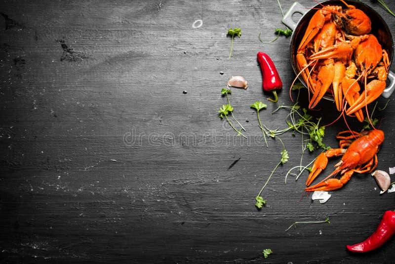 Οι λιχουδιές τροφίμων Βρασμένοι αστακοί με τα χορτάρια και τα πικάντικα πιπέρια στοκ εικόνα